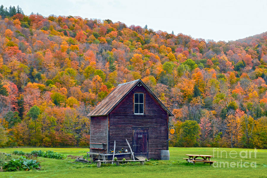 Garden Photograph - Vermont Garden Shed In Autumn by Catherine Sherman