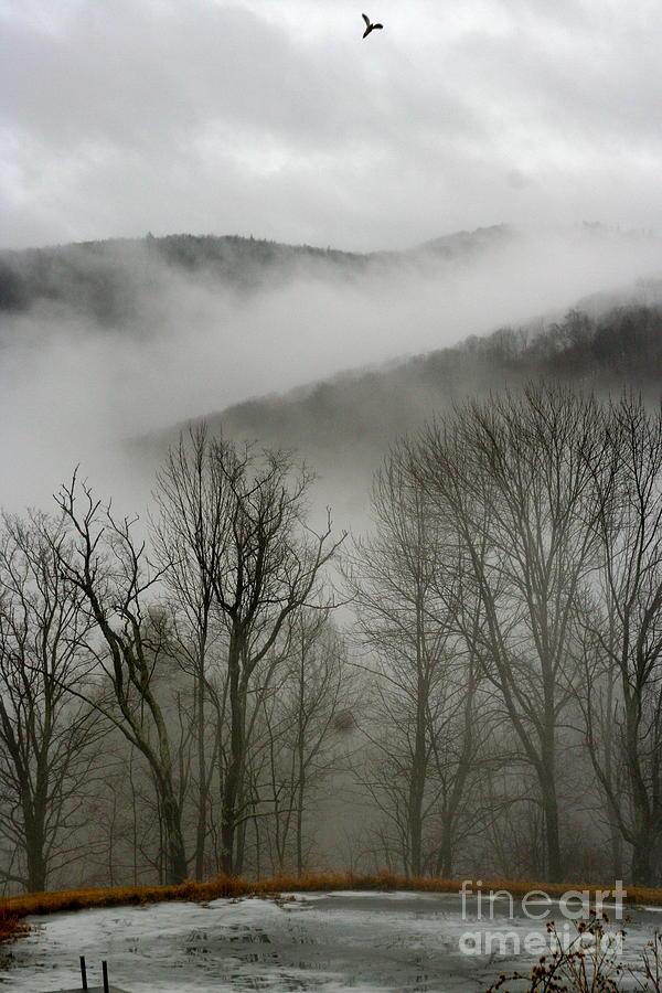Mist Photograph - Vermont Mist by Paula Deutz