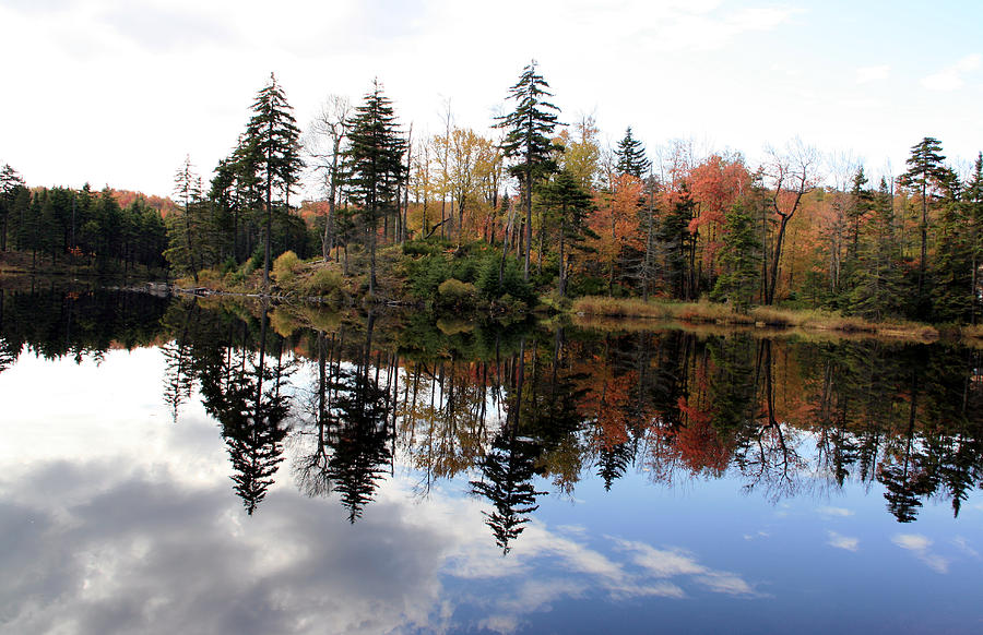 Vermont Photograph - Vermont Reflections 2 by George Jones