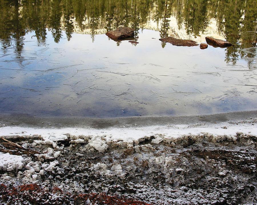 Nature Photograph - Vernal Pond IIi by D Kadah Tanaka