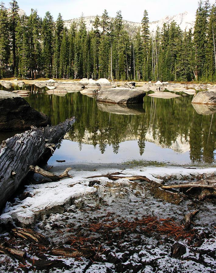Nature Photograph - Vernal Pond Xv by D Kadah Tanaka