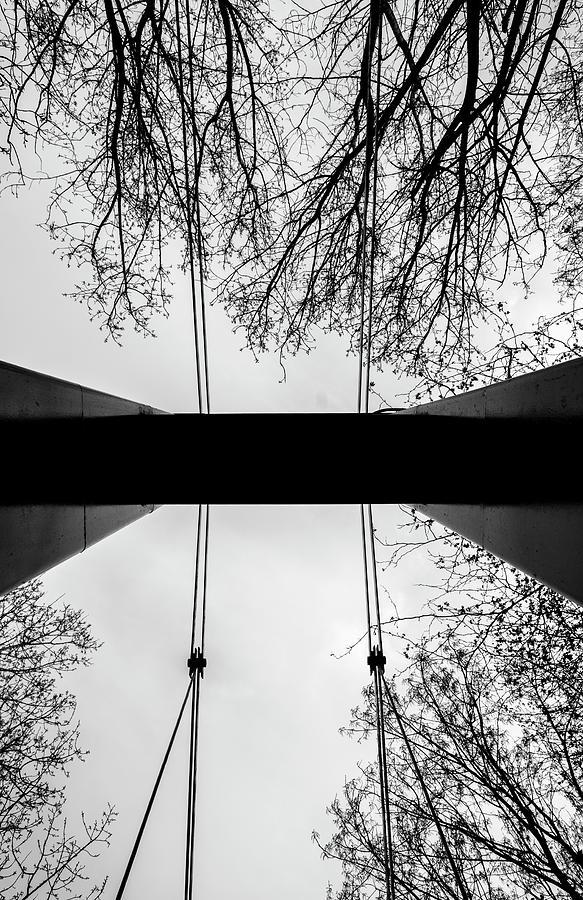 Bridge Photograph - Vertical Bridge In Bw by Nikos Stavrakas