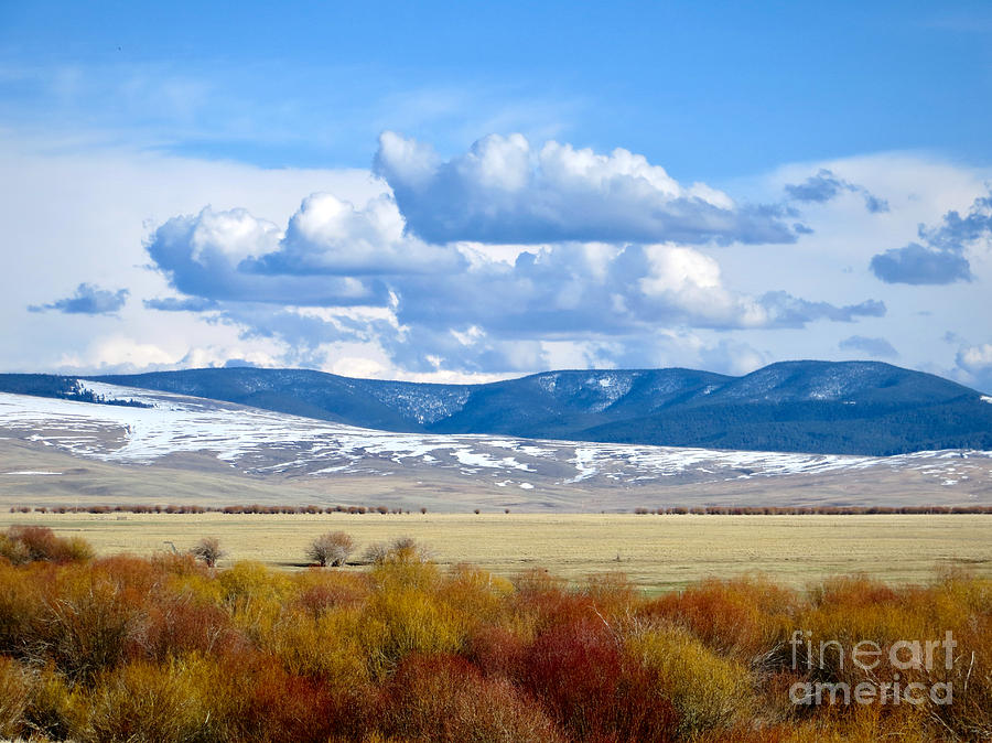 Montana Photograph - Vibrant Montana by Rachel Morrison