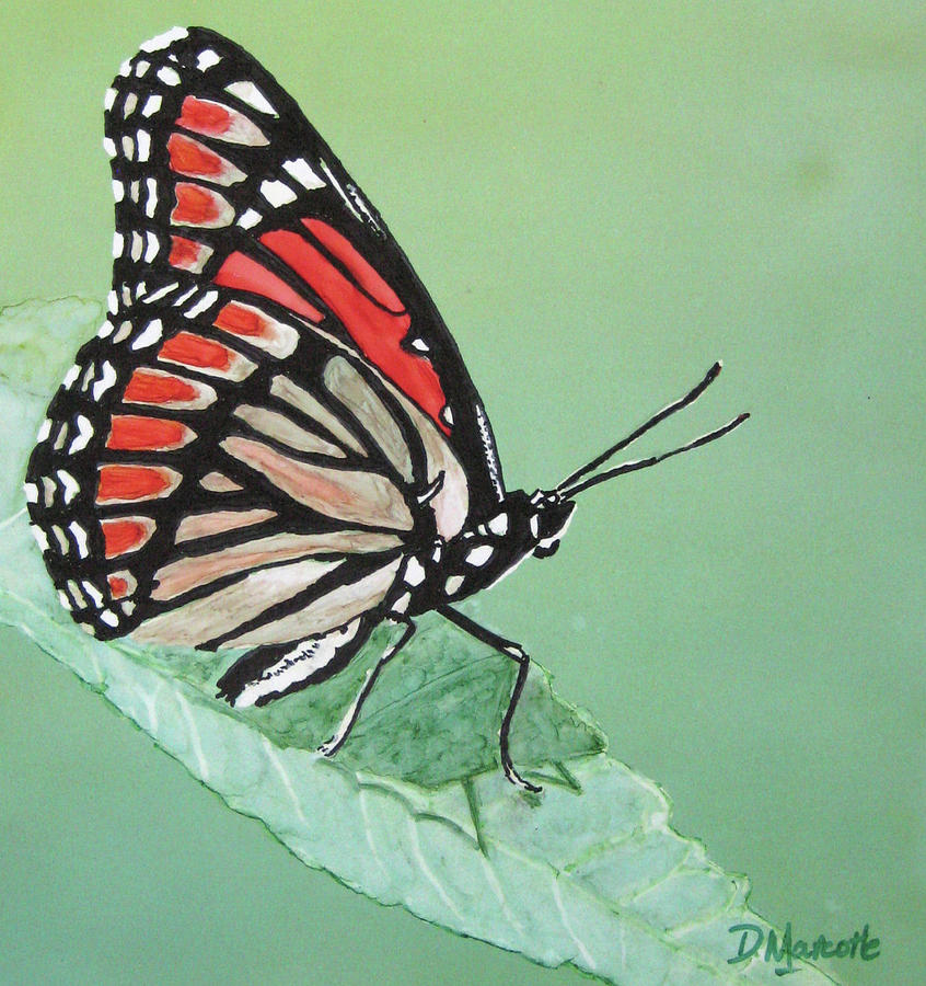 Butterfly Painting - Viceroy by Diane Marcotte