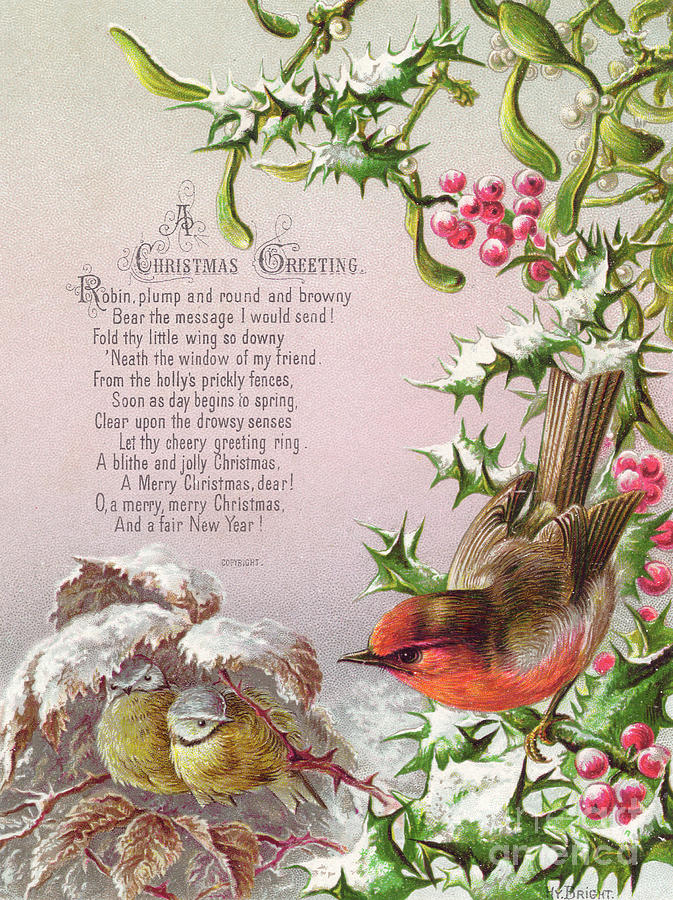 victorian christmas and new year card of a robin and two birds in a snowy scene painting by english school victorian christmas and new year card of a robin and two birds in a snowy scene by english school