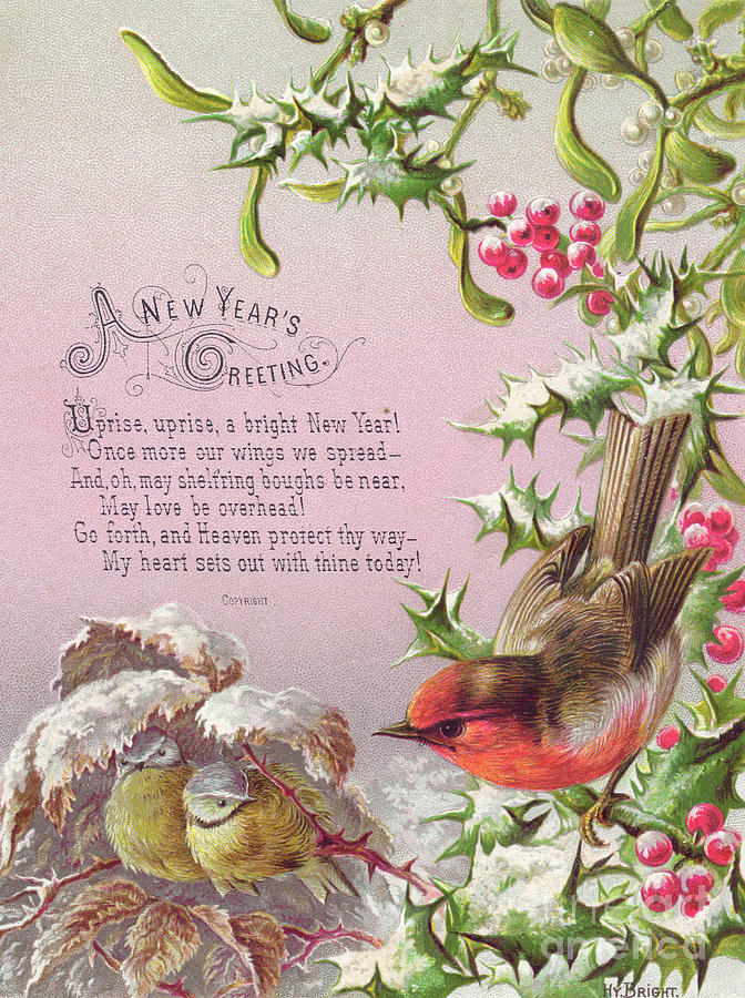 greetings card painting victorian new year card of a robin and two birds in a