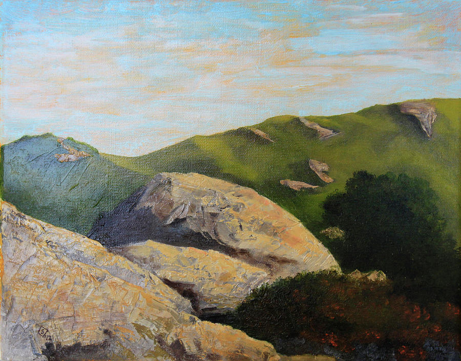 View from a Path Painting by Terry Sonntag