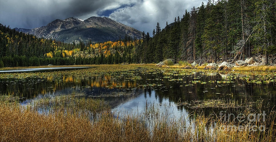 Cub Photograph - View From Cub Lake by Pete Hellmann