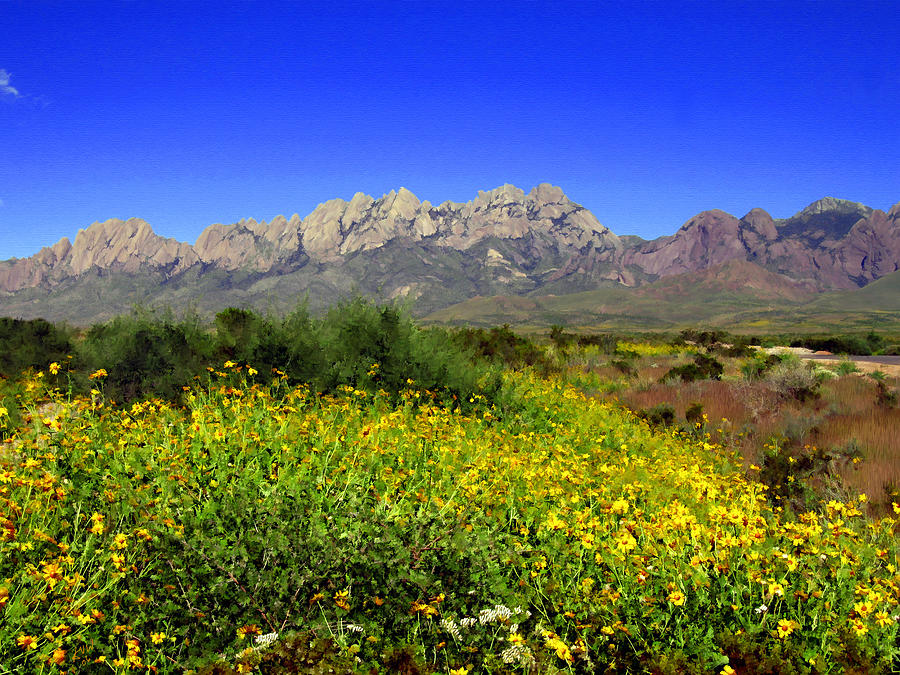 Organ Mountains Photograph - View From Dripping Springs Rd by Kurt Van Wagner