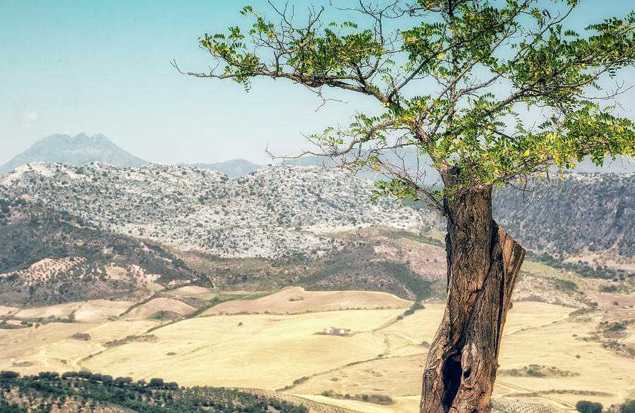 Landscape Photograph - View From Ronda Spain by Nannie Van der Wal