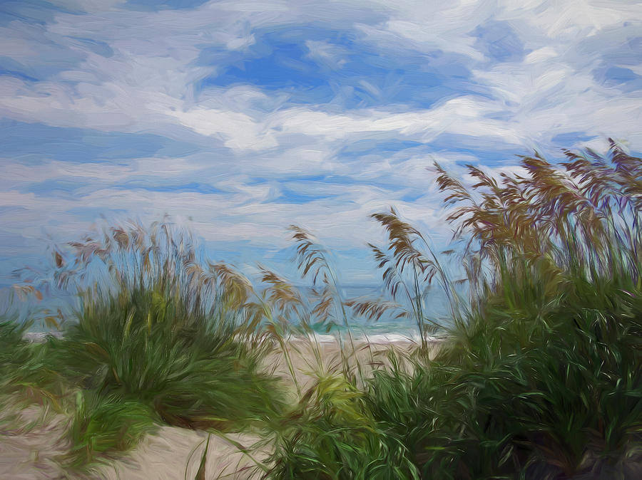 View From The Outer Banks Dunes Photograph