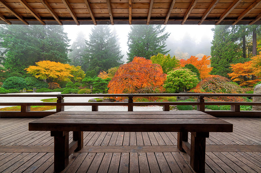 Japanese Garden Photograph - View From The Pavilion by David Gn