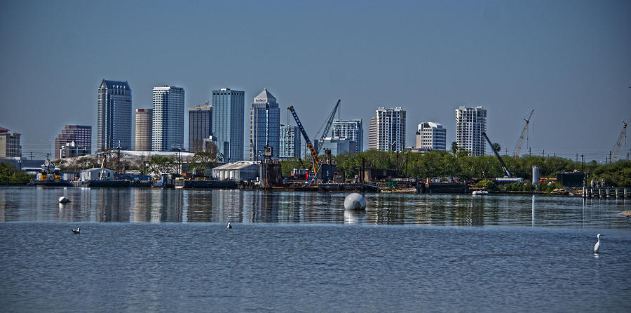 Tampa Photograph - View From The Port by Chauncy Holmes