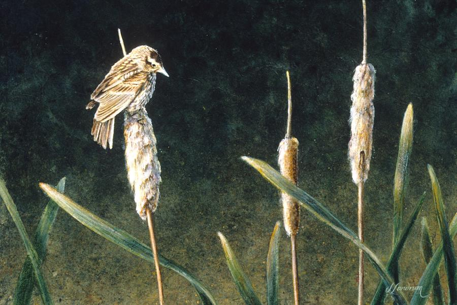 Bird Painting - View from the Top by Janet Landrum