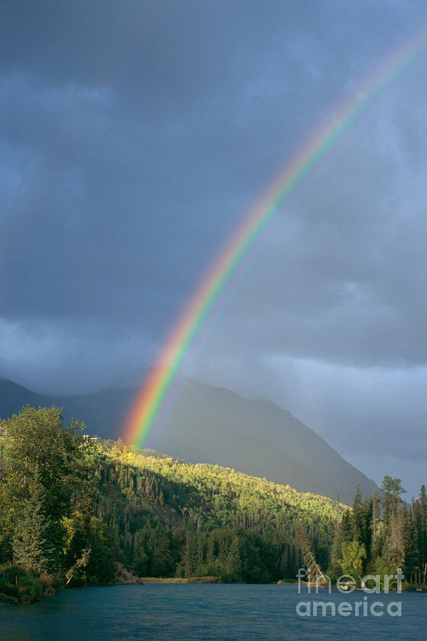 Afternoon Photograph - View Of Alaska by Gloria & Richard Maschmeyer - Printscapes