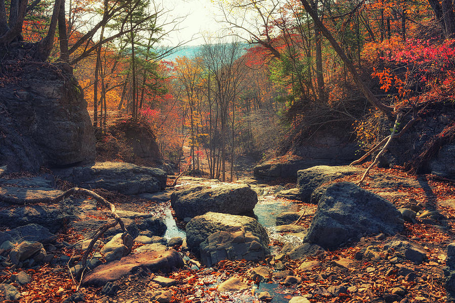 View Of An Autumn Forest And A Stream Near Boulders In The Hills Photograph