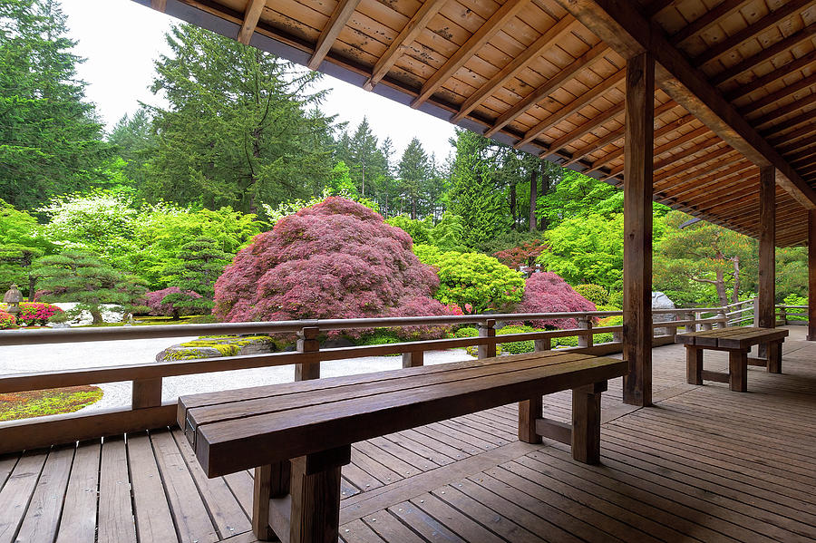 Japanese Photograph - View of Japanese Garden from the Veranda by David Gn