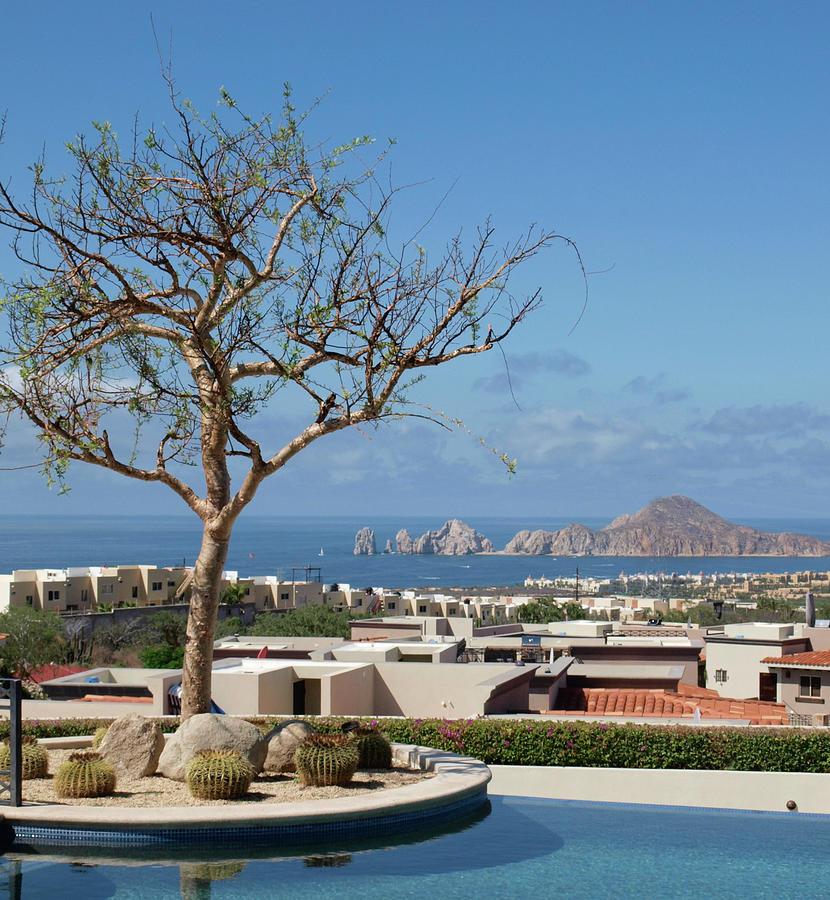 Las Ventanas Photograph - View of Lands End by Lea Rhea Photography