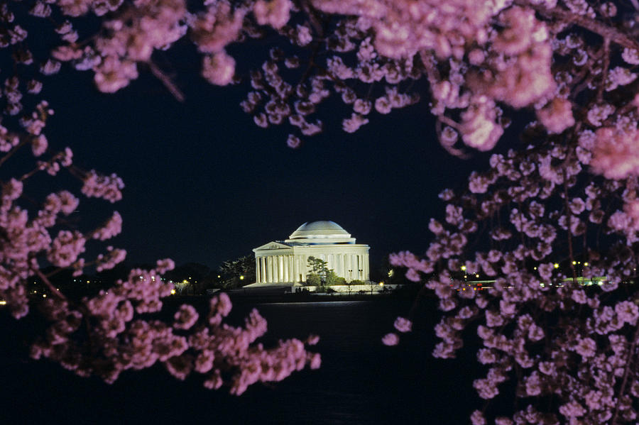 Cherry Blossoms Photograph - View Of The Jefferson Memorial by Kenneth Garrett
