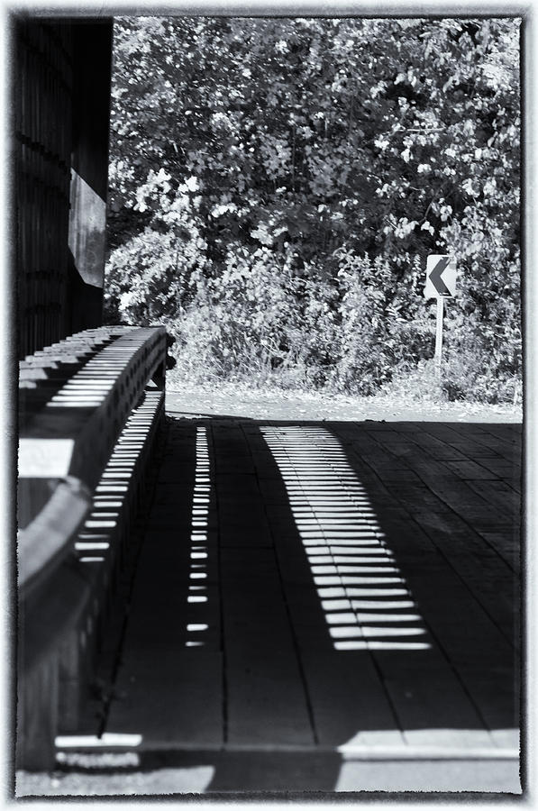 Wood Photograph - View Thru Ware Covered Bridge by Mike Martin