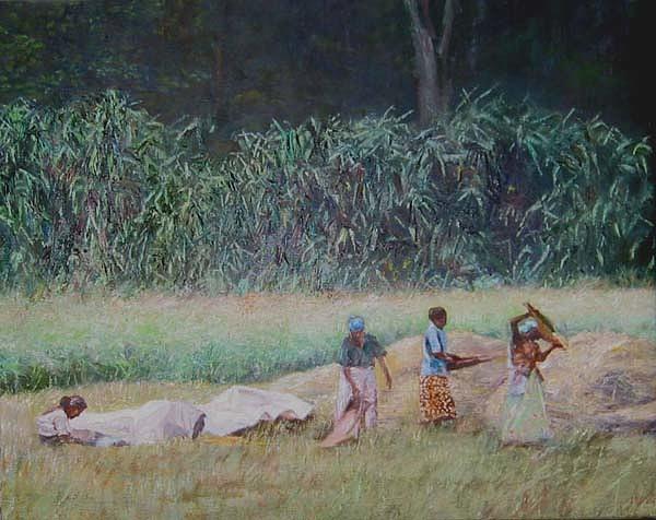 Landscape Painting - Village Harvest by Ifthikar Cader
