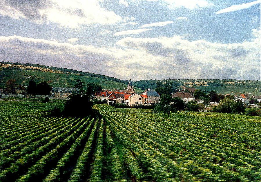 Vineyards Photograph - Village In The Vineyards Of France by Nancy Mueller