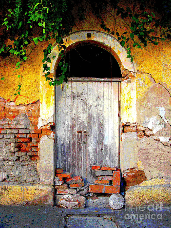 Door Photograph - Village Jungle By Darian Day by Mexicolors Art Photography