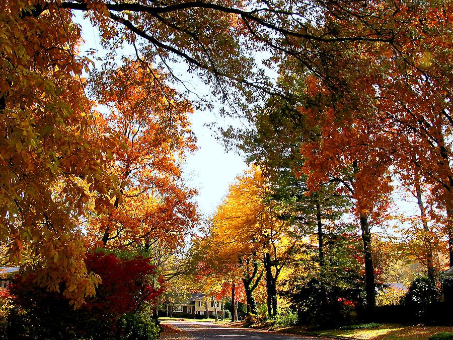 Autumn Photograph - Village Street In Autumn by Susan Savad