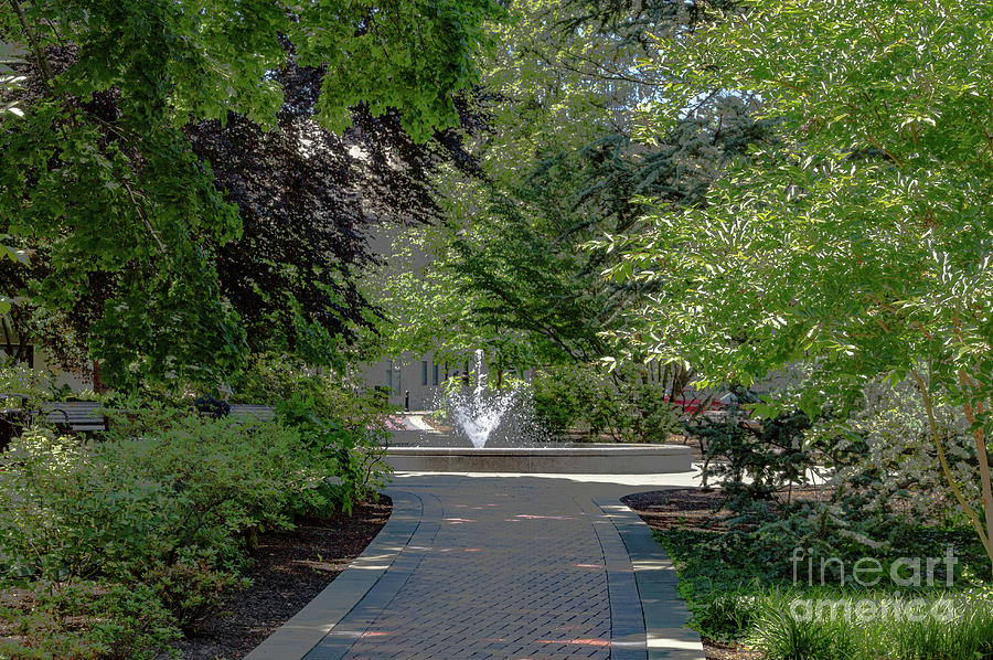 Vu Photograph - Villanova Fountain by William Norton