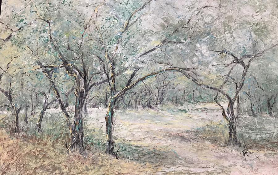 Vincents Olive Trees 2 by Robin Miller-Bookhout