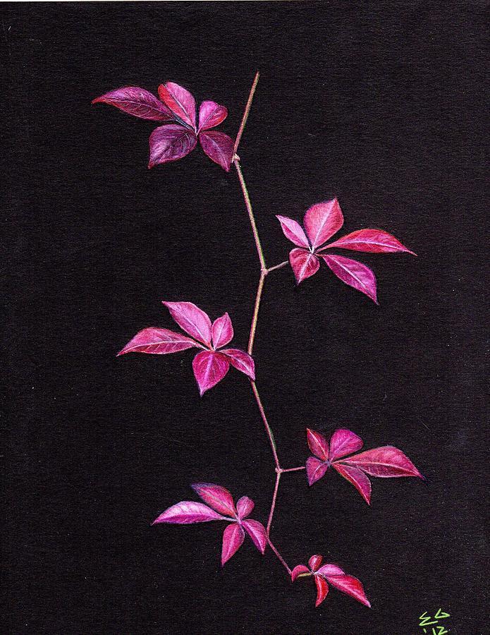Vine Drawing - Luster by Ekta Gupta