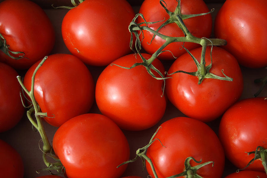 Tomatoes Photograph - Vine Ripe Tomatoes Fine Art Food Photography by James BO  Insogna