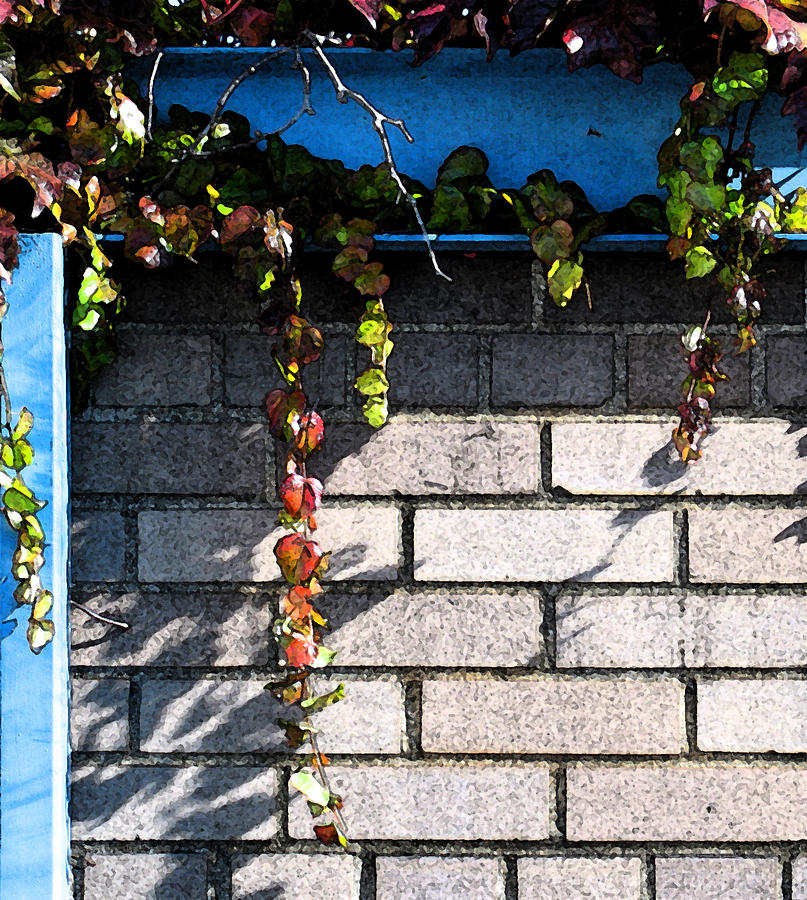 Vines Photograph - Vines On Blue by Gary Everson