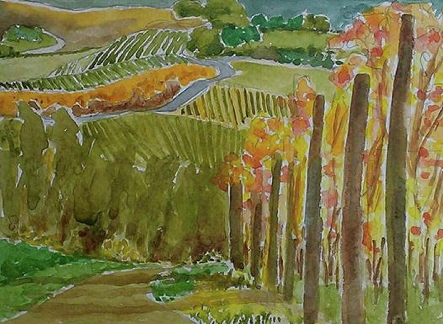 Watercolors Painting - Vineyard And Cultivated Fields by Janet Butler
