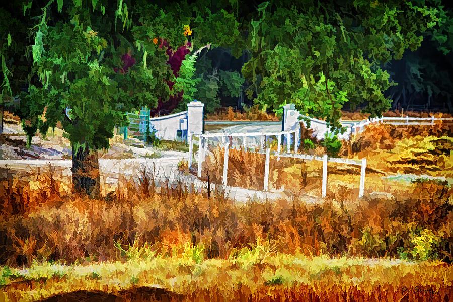 California Digital Art - Vineyard Gate by Patricia Stalter