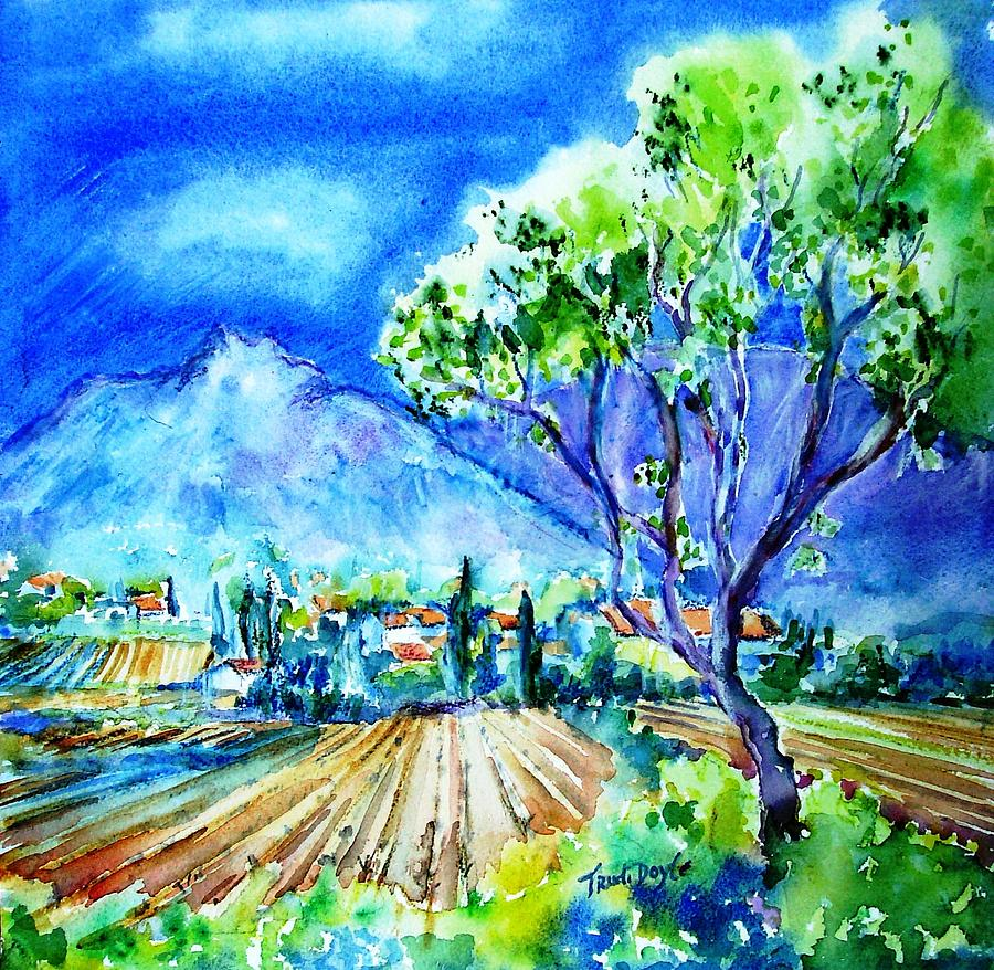Vineyard Painting - Vineyard Near Opoul In France  by Trudi Doyle