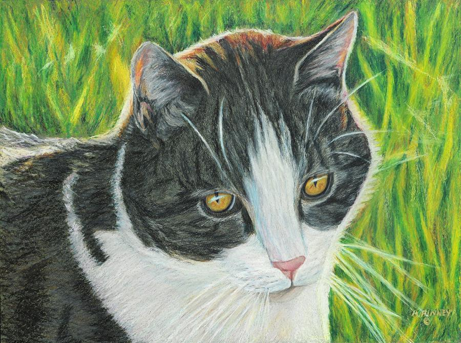 Cat Painting - Vinny In Late Afternoon by Angela Finney