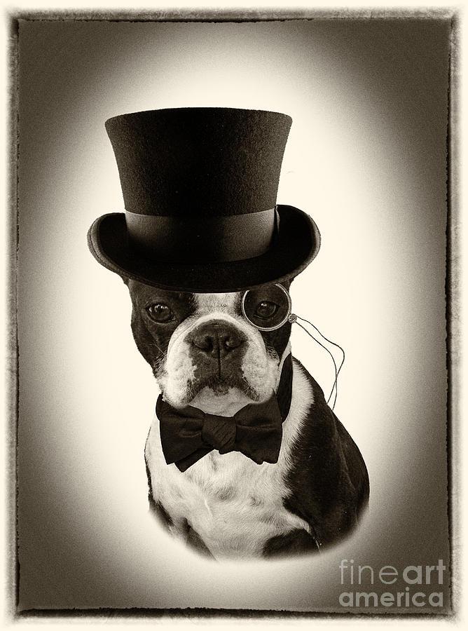 Vintage American Gentleman Photograph