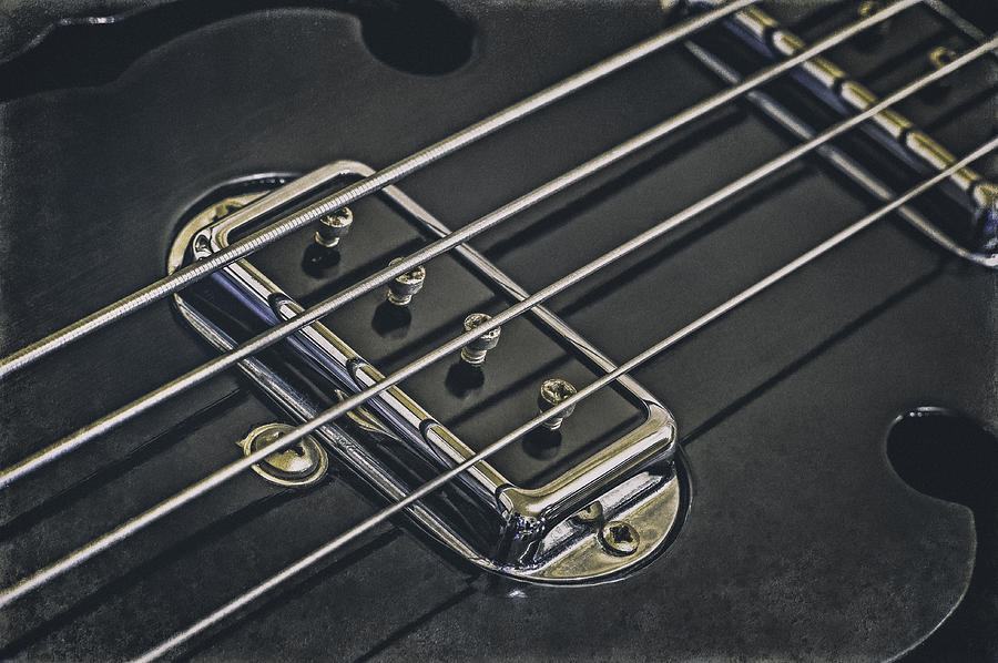 Vintage Bass Photograph