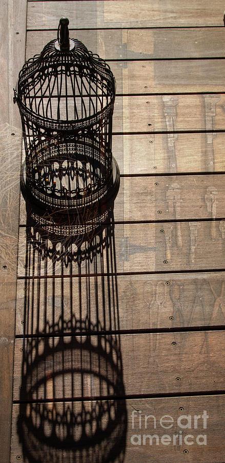 Vintage Birdcage Textures Photograph