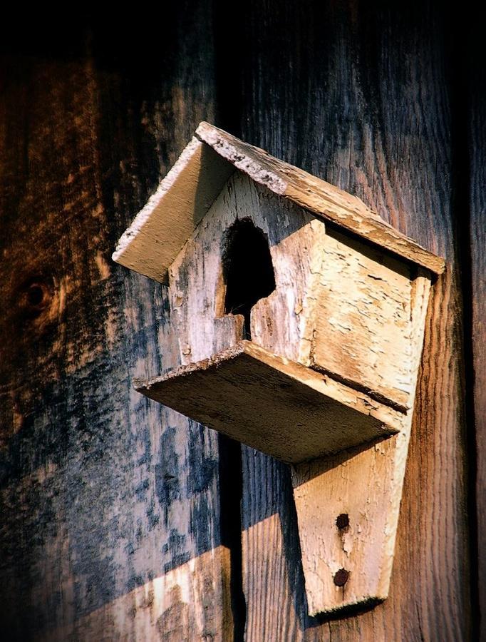 Antique Photograph - Vintage Birdhouse by Jen McKnight