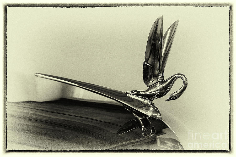 1948 Photograph - Vintage Cadilac 62, Hood Ornament by Vyacheslav Isaev