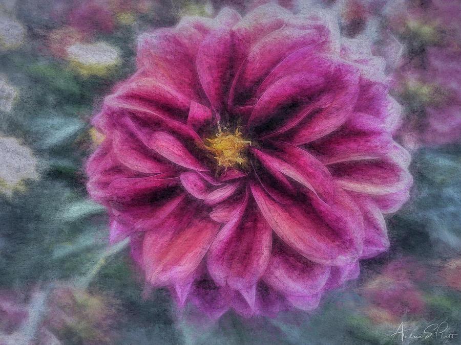 Vintage Dahlia by Andrea Platt