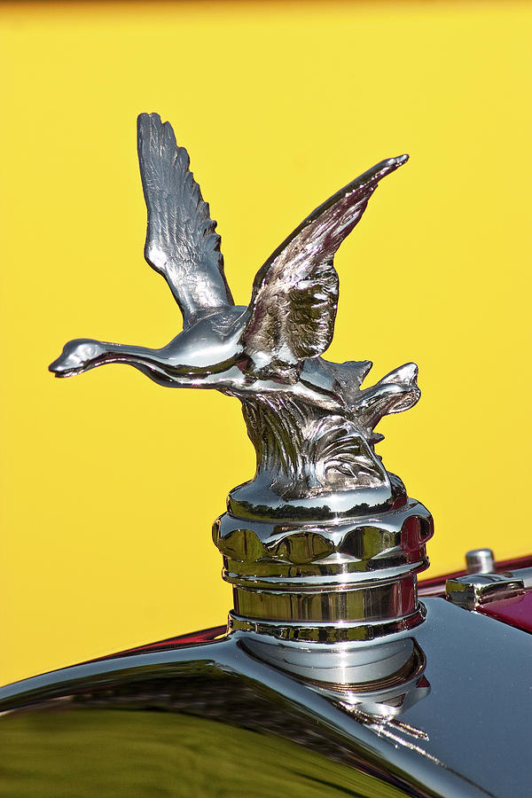 Vintage Flying Goose Car Hood Ornament Photograph by Bruce Beck