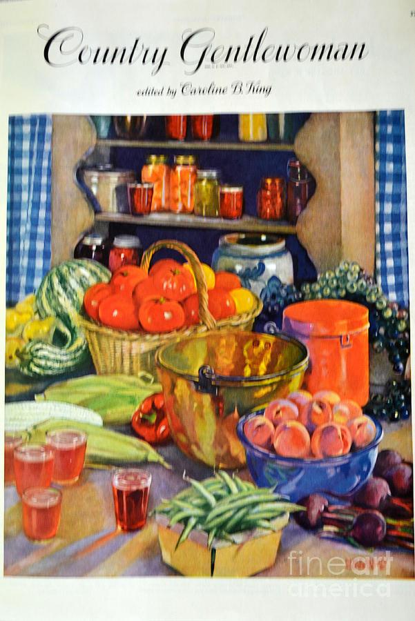 Kitchen Photograph - Vintage Harvest by Diane montana Jansson