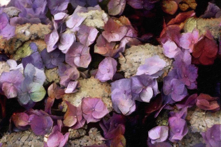 Beautiful Flower Garden Mixed Media - Vintage Hydrangea by Susan Maxwell Schmidt
