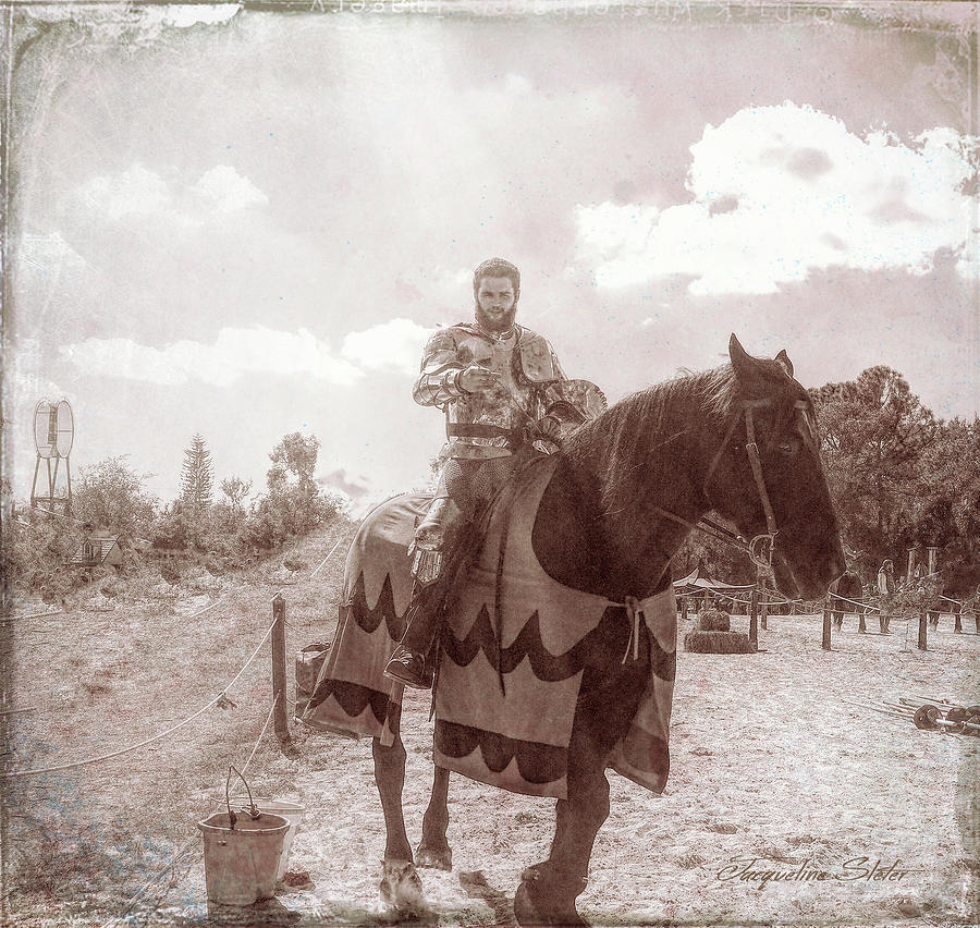 Vintage Knight by Jacqueline Sleter
