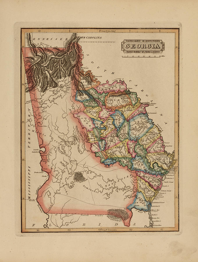 19th Century Painting - Antique Map Of Georgia by Fielding Lucas