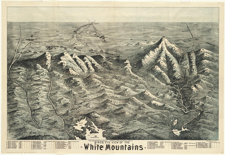 Vintage Map Of The White Mountains - 1890 Drawing