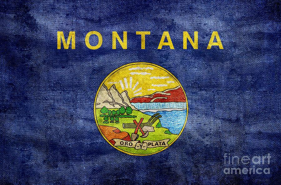 Montana Flag Photograph - Vintage Montana Flag by Jon Neidert